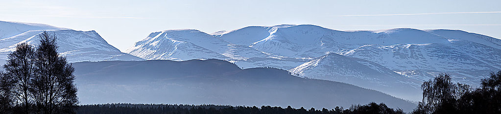 Cairngorms sheen
