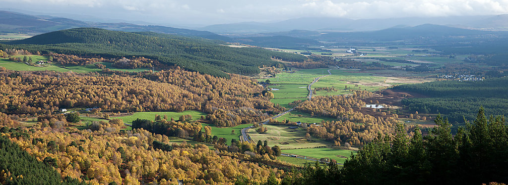 Strathspey Autumn Panorama